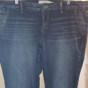torrid Jeans - Blue jeans